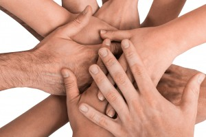39780479 - group of hands holding together on white background.