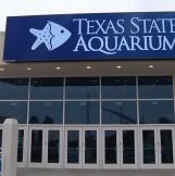 The Texas State Aquarium