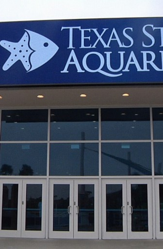 The Texas State Aquarium