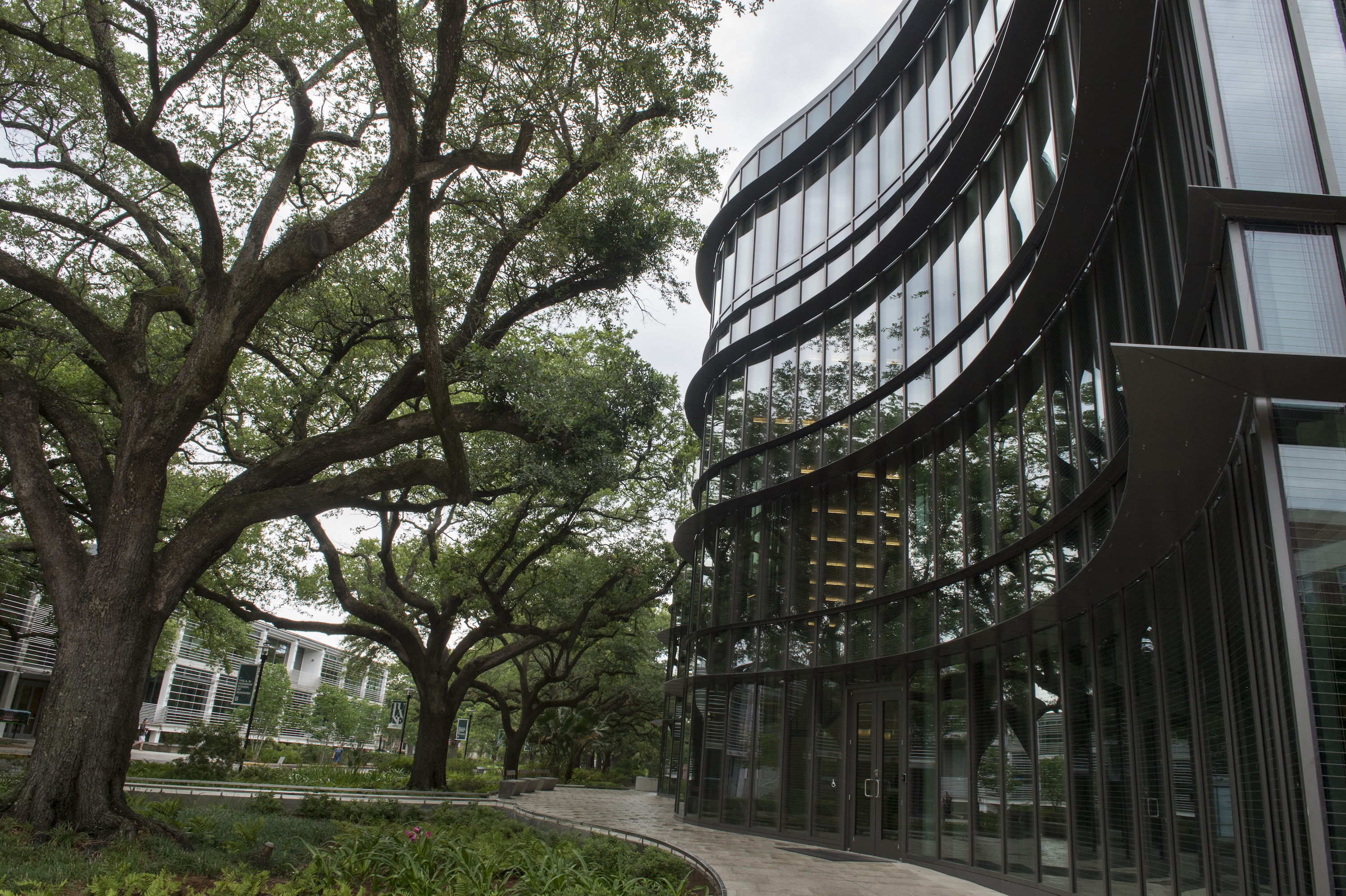 Tulane University A.B. Freeman School of Business